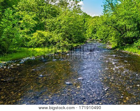 Clear and shallow Vancampens Brook in rural Warren County New Jersey.