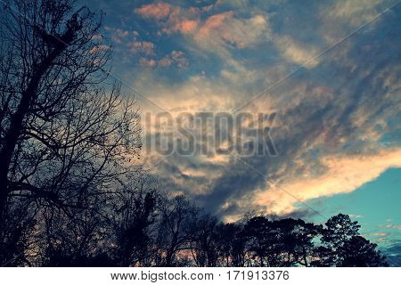 Sunset with Foreboding Clouds with Menacing Trees in Foreground