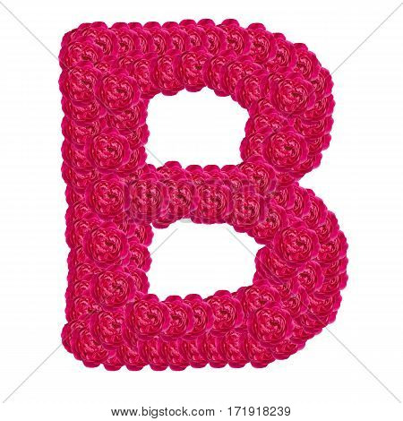 Letter B alphabet with damask rose ABC concept type as logo isolated on white background