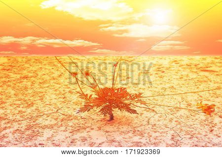 Green plant growing through sand soil background