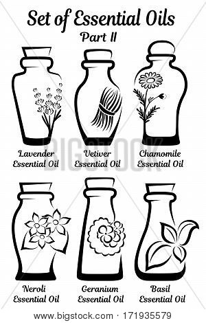 Set of bottles for essential oils. Each bottle is a single composition with flowers or other raw materials from which the essential oil is obtained. Part 2