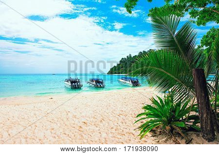 Thailand koh rok island. Landscape of sea beach with several boats on the sea and palms around