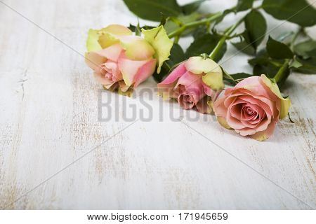 Pink Roses On A Wooden Background.