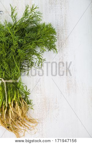 Fresh Dill On A Light Wooden Background.