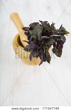 Basil On A Light Wooden Background.
