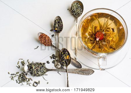 Blooming or flowering tea in a glass cup and silver spoons with various kinds of tea on white background