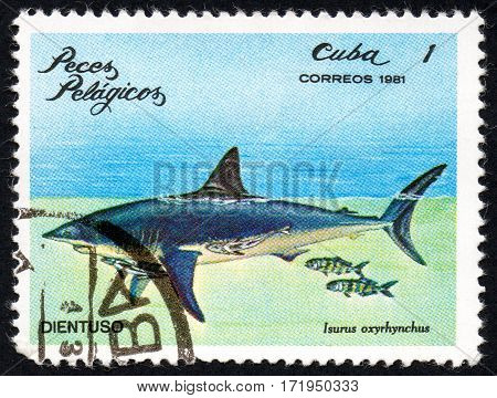 UKRAINE - CIRCA 2017: A stamp printed in Cuba shows the Pelagic Fish Isurus oxyrhynchus circa 1981
