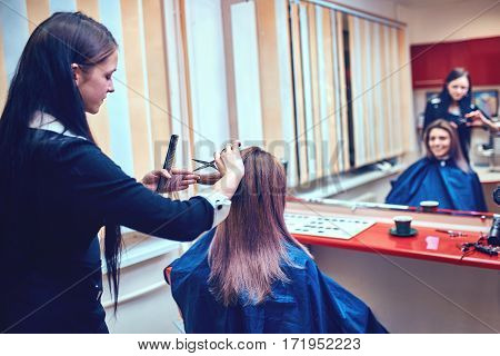 Hairdresser trimming brown hair with scissors .