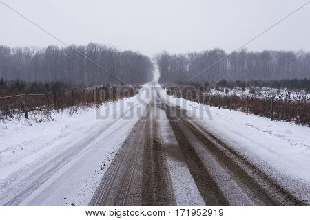 Road through farmland and snowy landscape near Avilla, Indiana, United States of America.