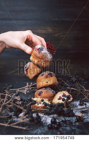 Muffin With Currants On A Dark Background. Muffins Lined Tower, One On The Other. The Bottom Branche