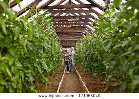 farming, gardening, agriculture and people concept - happy senior couple working at farm greenhouse