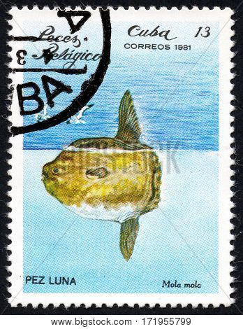 UKRAINE - CIRCA 2017: A stamp printed in Cuba shows the Peces Pelagicos Mola miola circa 1981