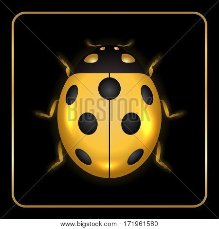 Ladybug Gold Insect Small Icon