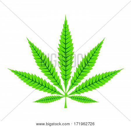 Cannabis leaf icon vector illustration on white
