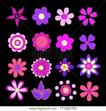 colorful spring flowers vector illustration on black background