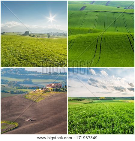 Different Agricultural Landscapes