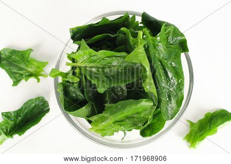 fresh spinach, high protein and amino acids