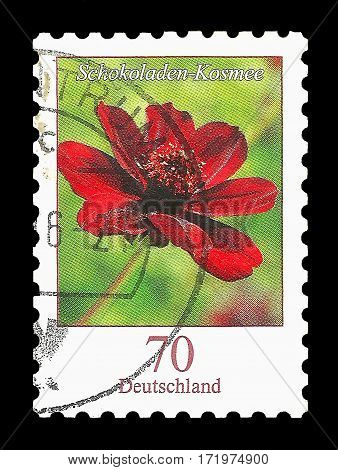 Postage Stamp : Germany 2015 Chocolate Cosmos Flower Schokoladen-Kosmee - Cosmos atrosanguineus (Hook.) Voss 1894