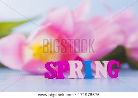 Word Spring made from colorful wooden letters on tender floral background