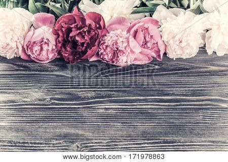 Peony Flowers On Vintage Wooden Boards