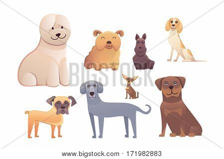 Group of purebred dogs. Illustration for dog training courses, breed club landing page and corporate web design