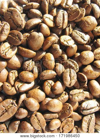coffee in grains macro closeup food background