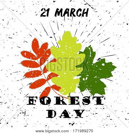 International day of forest 21 March Black Lettering Typography with oak, marple, rowan tree leaves burst on a Old Textured Background. Vector illustration for cards, banners, print
