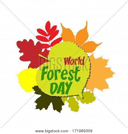 International day of forest Lettering Typography with different oak, marple, rowan tree leaves isolated on a white background. Vector illustration for cards, banners, print.