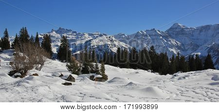 View from Braunwald Swiss Alps. Snow covered mountains Gross Charpf Hausstock and others.