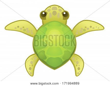 Cartoon small turtle animal, vector illustration, horizontal, isolated