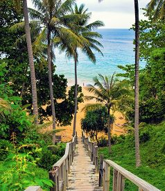 Old wooden down stairs to the beach with palms around. Naithon beach Phuket Thailand