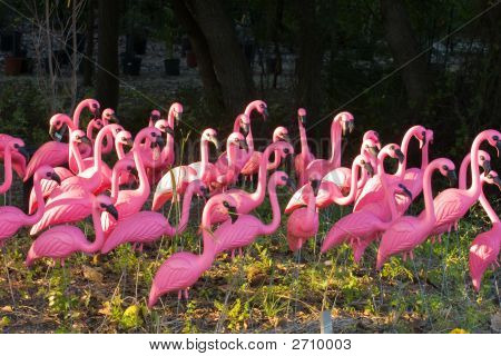 Fake Flamingos In The Forest
