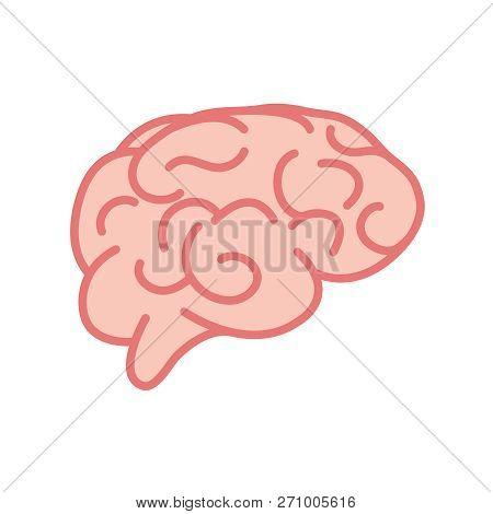 Vector Brain. Flat Illustration. Vector Brain Symbol.