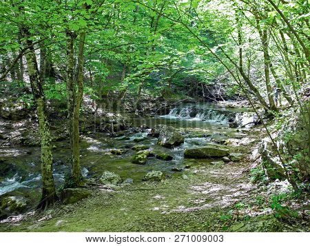 Cascading River With Beautiful River Thresholds Near The Forest Trail In The Green Spring Forest. Cr