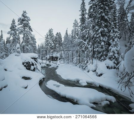 Deep Fresh Snow In Norwegian Forest. Boreal Landscapes In Winter Scenery.