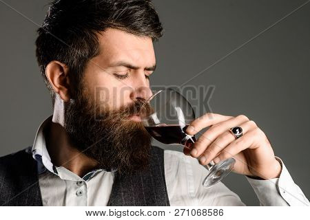 Berded Man Tasting Glass Of Wine. Winetasting And Degustation Concept. New Year Party. Serious Man D