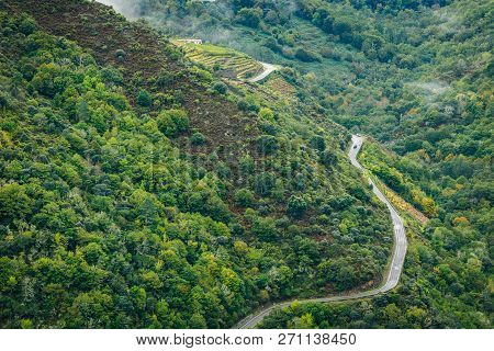 View Of Asphalt Road, Forest And Vineyards Along River Sil. Curvy, Asphalt Road Leading Through Fore