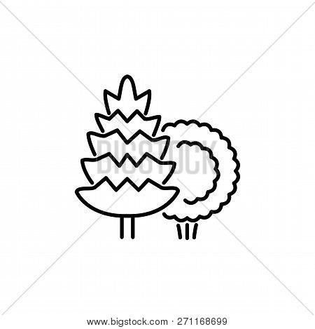 Black & White Vector Illustration Of Evergreen Tree & Shrub. Line Icon Of Conifer Plants. Gardening