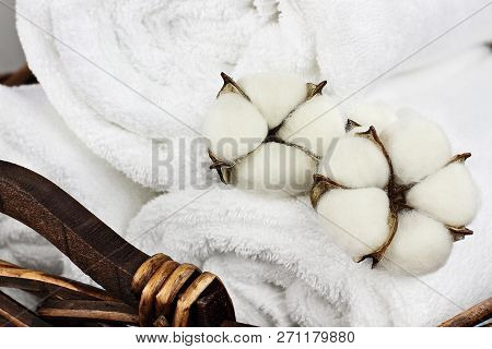 Laundry Basket Filled White Fluffy Towels And Cotton Boll Flowers. Focus On Foreground With Blurred