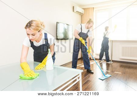 Cleaning Service With Professional Equipment During Work. Professional Kitchenette Cleaning, Sofa Dr