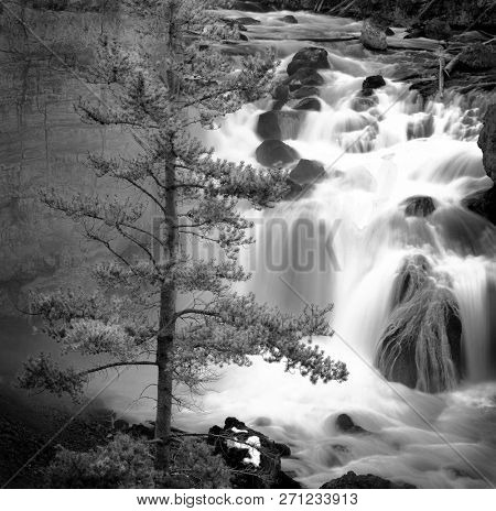 Misty waterfall water cascade cascading down rocks river creek with pine tree