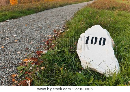 Mile Stone In The Grass Near The Road