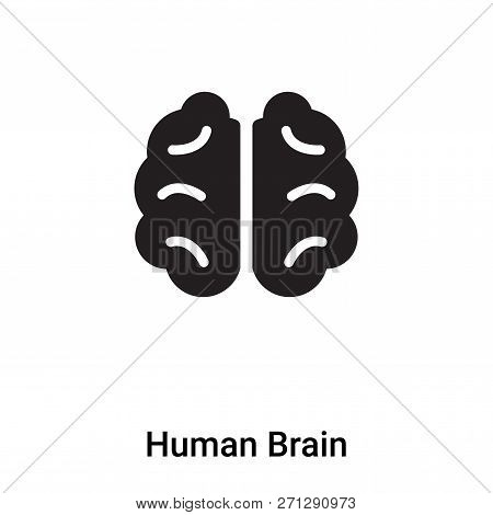 Human Brain Icon In Trendy Design Style. Human Brain Icon Isolated On White Background. Human Brain