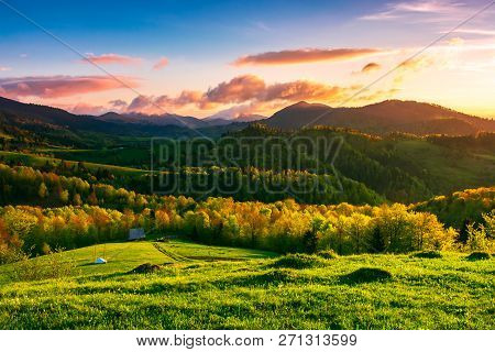 Green Wonderland At Purple Sunset. Amazing Countryside Landscape In Mountains Under The Gorgeous Sky