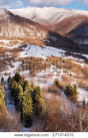 Beautiful Mountainous Winter Landscape On A Sunny Day. Spruce Trees Down In The Valley View From The