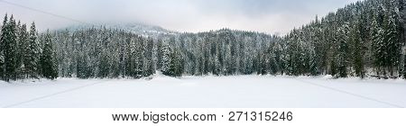 Panorama Of Beautiful Winter Mountainous Landscape. Spruce Forest Around The Frozen And Snow Covered