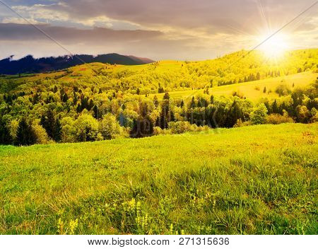 Beautiful Mountainous Countryside In Springtime At Sunset. Grassy Meadows And Forested Hill. Freshne