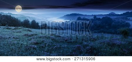 Panorama Of Beautiful Foggy Night In Mountains. Purple Thyme Flowers On The Grassy Meadow. High Moun