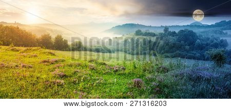 Time Change Concept. Panorama Of Beautiful Foggy Landscape In Mountains. Purple Thyme Flowers On The