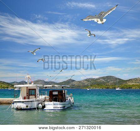 Seagulls And Boats In Nature Park Telascica. Dugi Otok Island, Croatia.